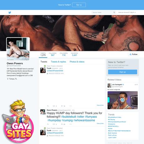 Gay porno na twitteru